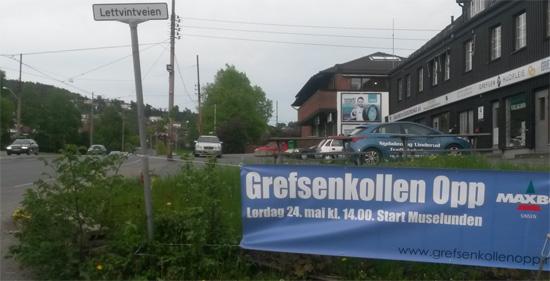 GO_Banner2014_Lettvinten